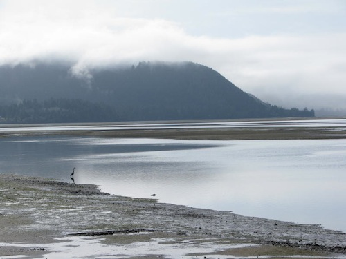 Netarts Bay, by Dale Harmer